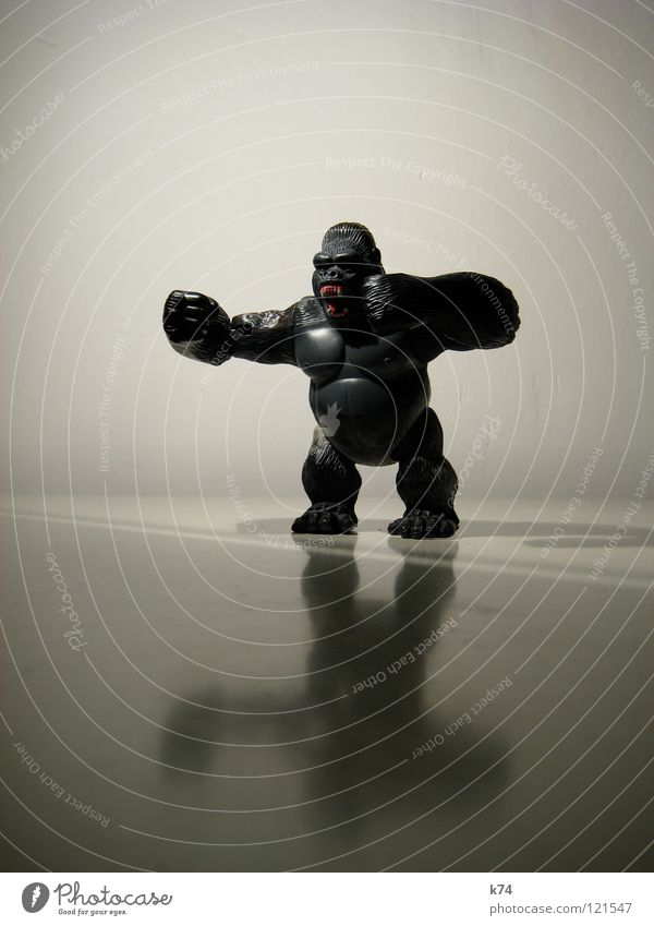 Primat II schwarz Tier Kraft frei gefährlich bedrohlich Spielzeug Wut Fell Zoo stark Wildtier gefangen Säugetier Ärger