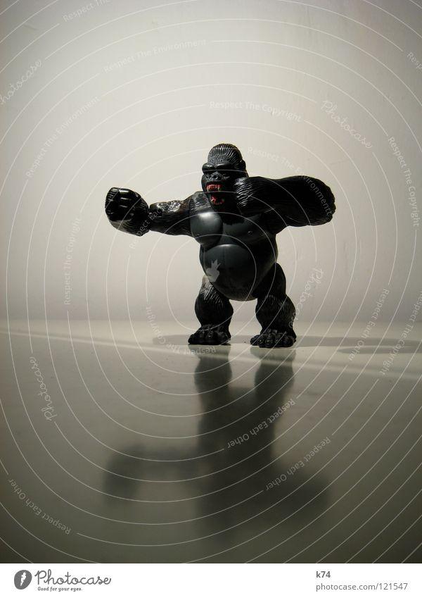 Primat II schwarz Tier Kraft frei Kraft gefährlich bedrohlich Spielzeug Wut Fell Zoo stark Wildtier gefangen Säugetier Ärger