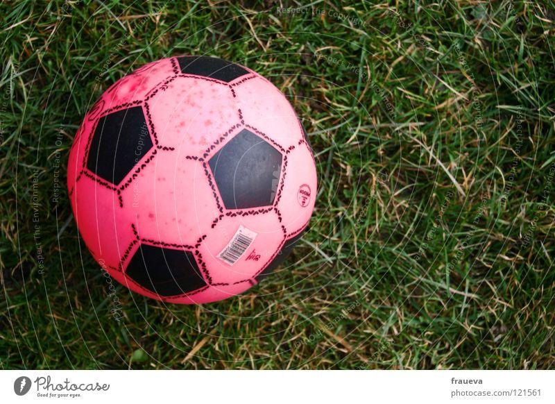 frauenfussball Gras rund rosa Spielen Spielzeug Sport Freizeit & Hobby Ball Kugel Außenaufnahme Sportrasen 1 Fußball Vogelperspektive Textfreiraum rechts