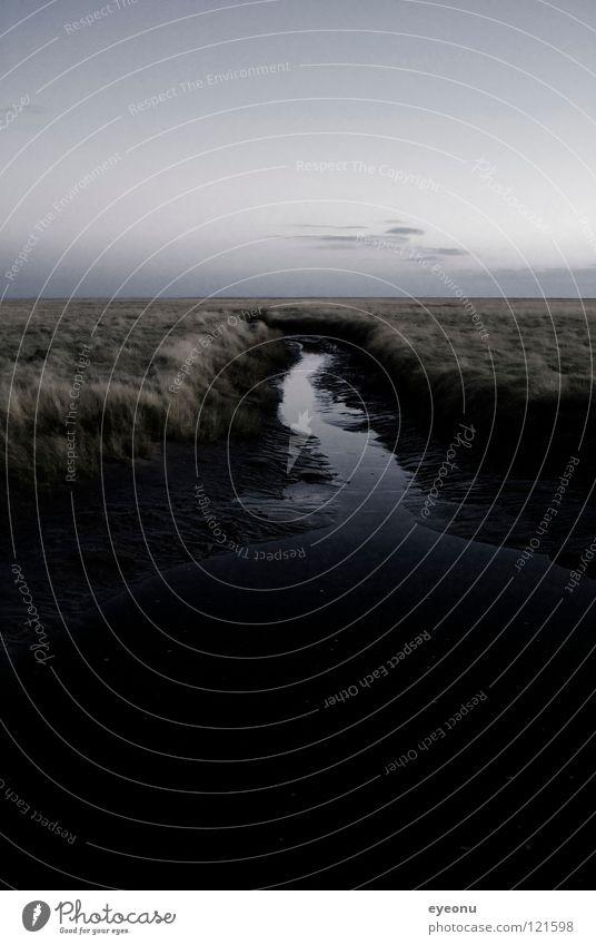 Wattwiese Wasser Meer Strand Küste Nordsee Graben Nordfriesland Westküste St. Peter Salzwiese