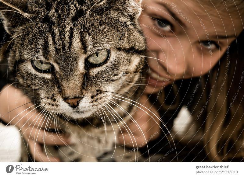 Was will das Mädchen von mir? feminin Kopf 1 Mensch 8-13 Jahre Kind Kindheit Haustier Katze Fell Tier Lächeln lachen Umarmen warten nah braun mehrfarbig
