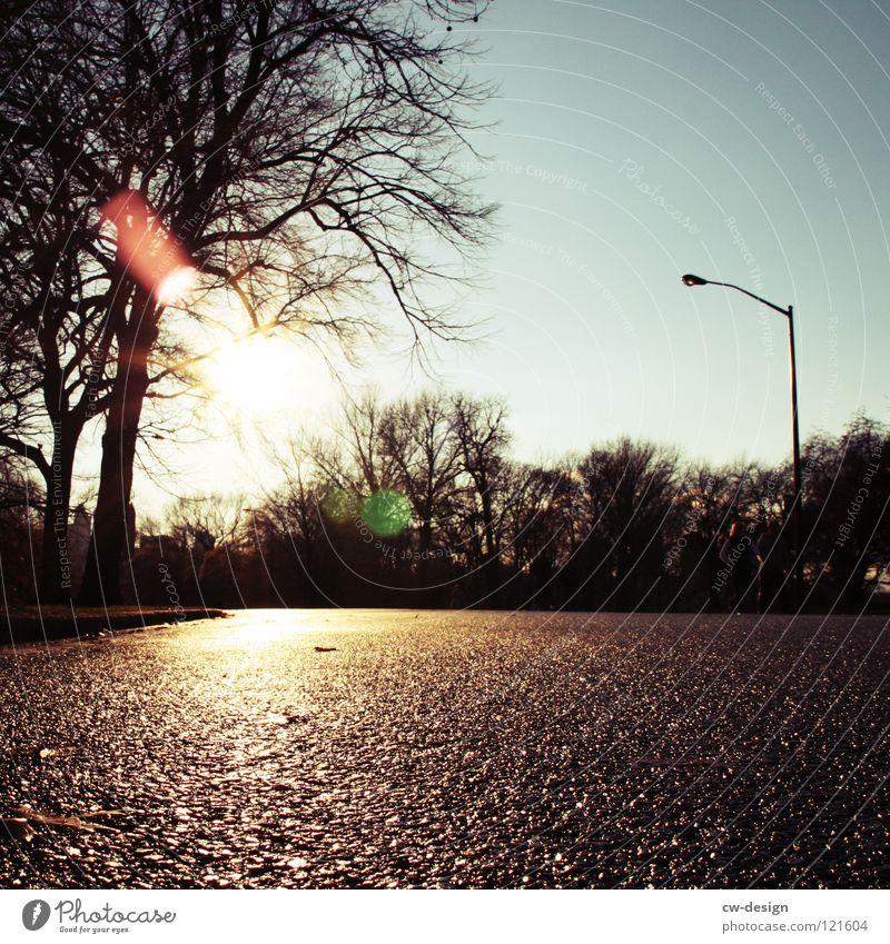 ick loof durch'n paaark, hab beene wie quaaark III Baum Sonne Winter Straße dunkel Herbst grau Park hell Regen gehen Freizeit & Hobby nass frisch Hochhaus Laufsport