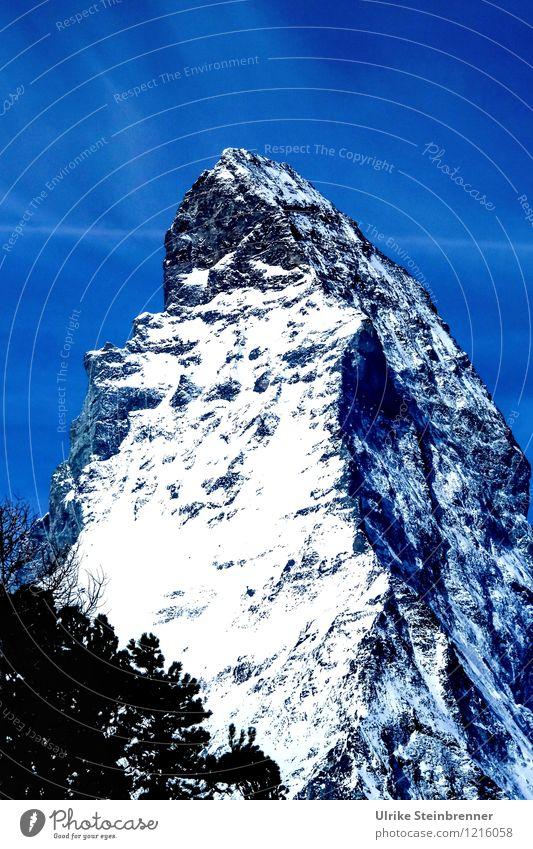 Gipfelmütze Tourismus Schnee Berge u. Gebirge Natur Landschaft Luft Himmel Frühling Schönes Wetter Pflanze Baum Alpen Schneebedeckte Gipfel leuchten stehen