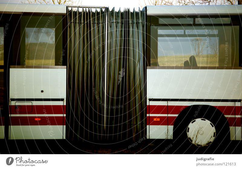 Bus weiß rot Farbe Fenster warten Verkehr Streifen Güterverkehr & Logistik Verbindung Station Amerika Fahrzeug parken Durchblick Verkehrsmittel