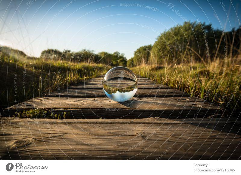 Welten #6 Natur Landschaft Pflanze Himmel Wolkenloser Himmel Sonnenlicht Frühling Sommer Schönes Wetter Wiese Eifel Hohes Venn Moor Glaskugel rund blau braun