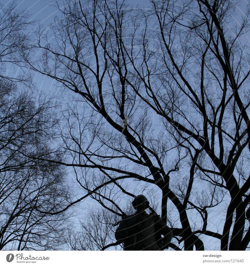K R E U Z R I T T E R I Mensch Himmel Natur Mann blau schön Baum Wolken Winter dunkel Wald schwarz Herbst Bewegung Hintergrundbild Kunst