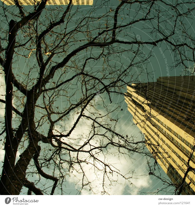 K R E U Z G A N G Himmel Natur blau schön Baum Winter Wolken Haus schwarz dunkel Straße Herbst Bewegung Architektur grau klein