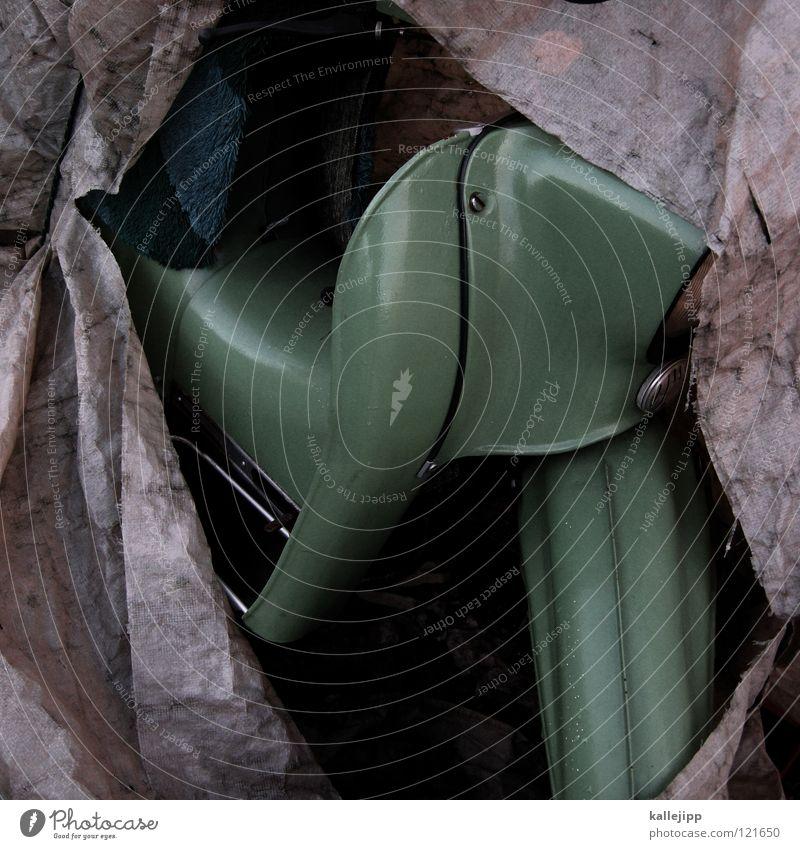 frühlingsbote Elefant Umhang Tunnel Einfahrt Haus dunkel Abdeckung Rostschutzfarbe Backstein Ständer Garage verrotten überwintern schlafen Gebrauchtwagen