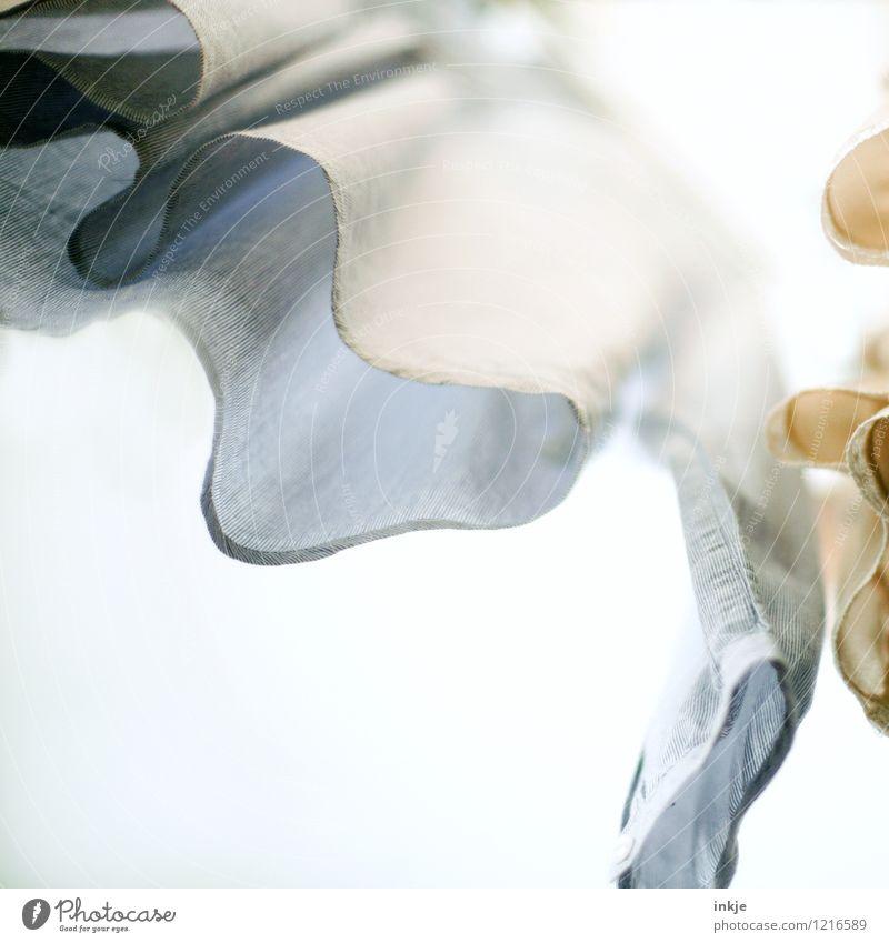Hemd Lifestyle Häusliches Leben Bekleidung Stoff hängen frisch hell hoch Sauberkeit Perspektive Pastellton trocknen Wäscheleine Farbfoto Gedeckte Farben