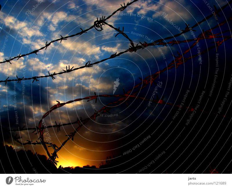 Freiheit Wolken Sonnenuntergang Zaun Stacheldraht gefangen Himmel Detailaufnahme Abentrot Justizvollzugsanstalt unfrei jarts