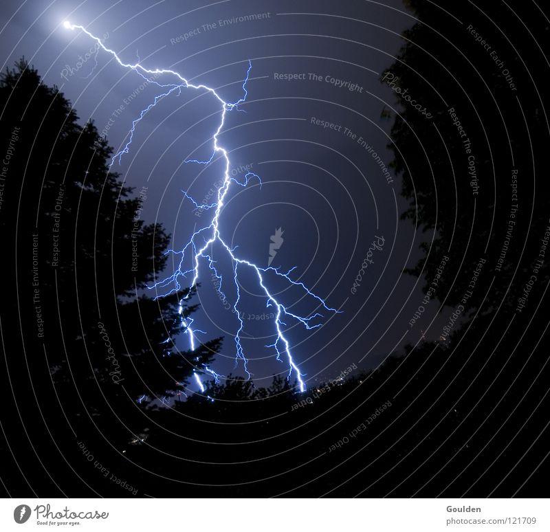 Versicherungsschaden Natur Baum Tod Wetter Geschwindigkeit Energiewirtschaft Elektrizität gefährlich Kabel bedrohlich Physik Sturm Blitze Gewalt Schmerz