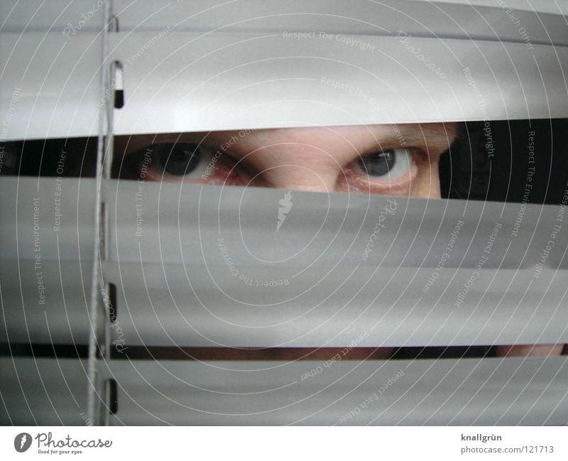 Augenkontakt Jalousie Frau Blick Blaue Augen Lamelle silber hell verstecken