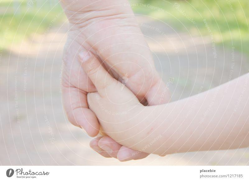 Nimm mich mit. Mensch Frau Kind Natur Sommer Sonne Hand Landschaft Erwachsene Wärme Liebe Bewegung Glück klein gehen Zusammensein