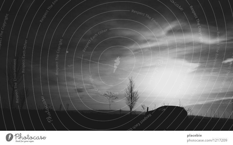 Landstreicher. Ausflug Abenteuer Ferne Umwelt Natur Landschaft Himmel Wolken Pflanze Baum Sträucher Wiese Feld Hügel Verkehr Verkehrsmittel Verkehrswege