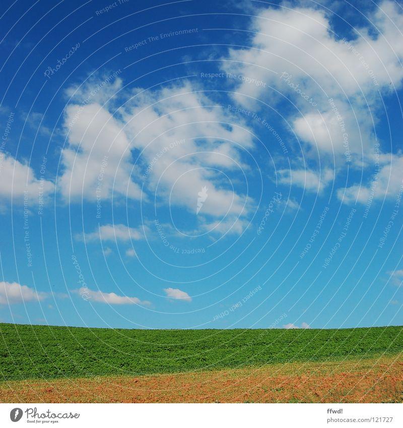 Sommer im Quadrat 1.3 Himmel blau Wolken schön Feld grün Wiese Landwirtschaft Ackerbau Landschaft Natur Reifezeit gerade einfach sehr wenige gutes Wetter
