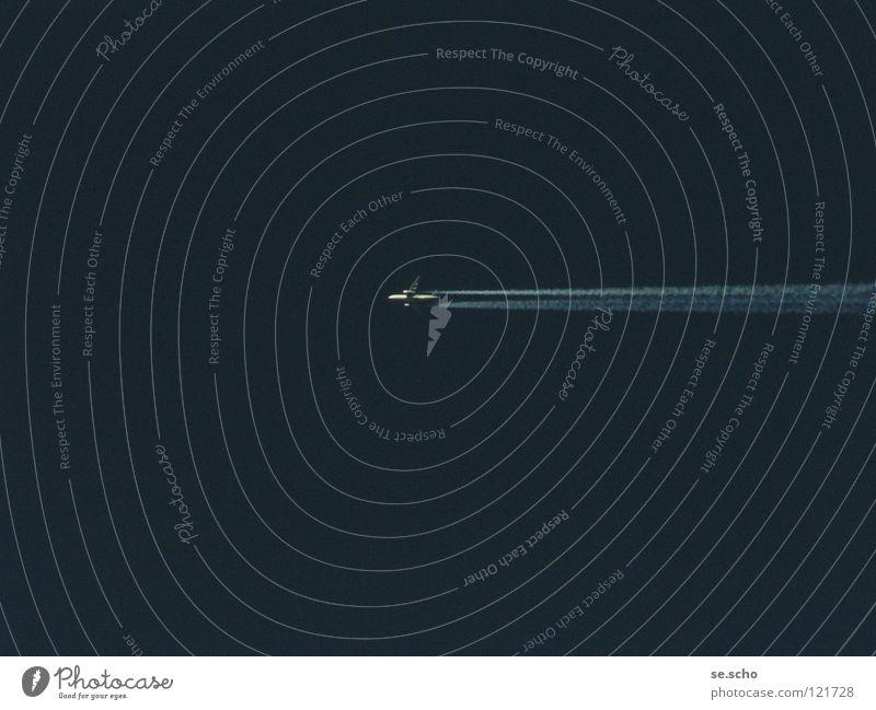 Vogel Himmel blau Ferien & Urlaub & Reisen Luftverkehr Maschine Flugzeuglandung