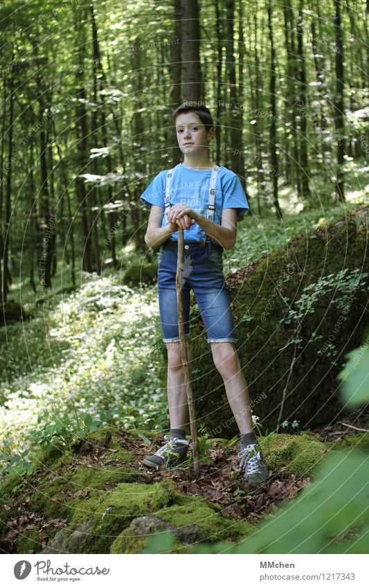 Stock und Stein Mensch Kind Sommer Baum Wald Junge Freiheit Felsen maskulin Zufriedenheit Freizeit & Hobby wandern Kindheit stehen warten Ausflug