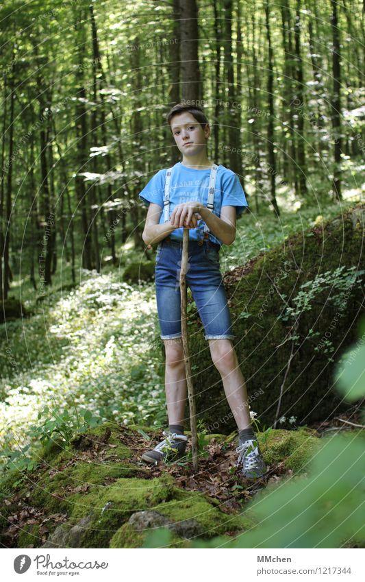Stehen Mensch Kind Natur blau grün Sommer Sonne ruhig Wald Umwelt Junge Park wandern Kindheit stehen warten