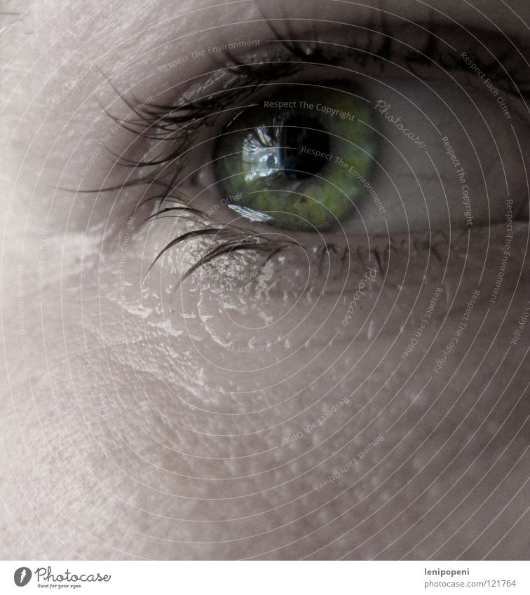 Greentear grün Trauer Reflexion & Spiegelung Wimpern herausschauen Pupille Enttäuschung Verzweiflung Frau Auge Tränen Wegsehen bleich hell Blick Wasser