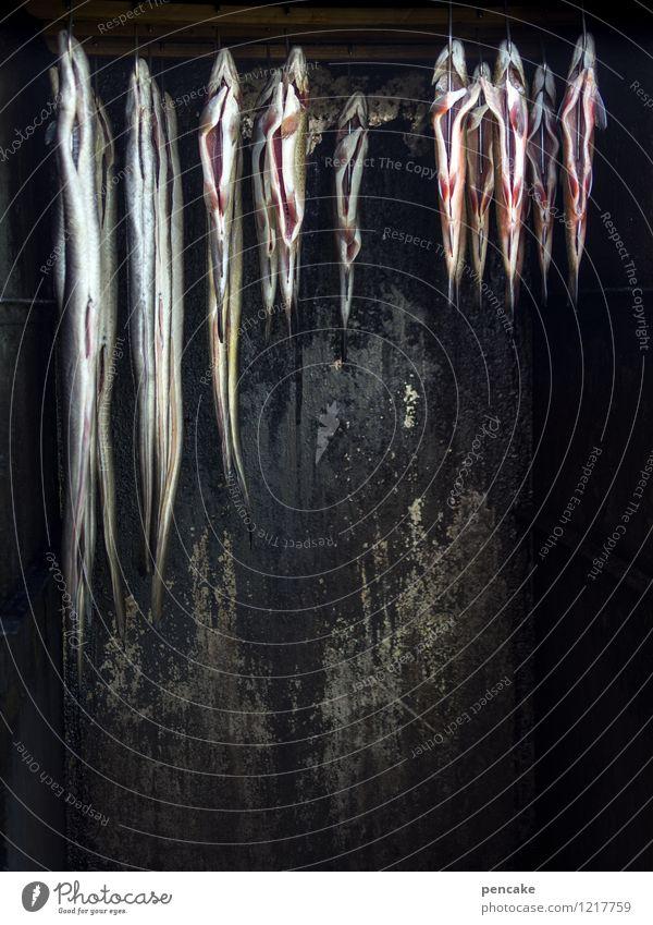 rauchopfer Lebensmittel Fisch Ernährung Duft gruselig heiß lecker Kultur Neugier Tod Tradition Aal Räucherfisch Herd & Backofen hängen Bodensee Rauch