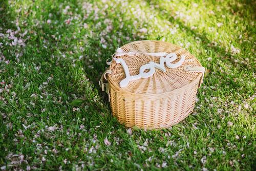 Love grün Sommer Freude Umwelt Liebe Wiese Glück Lifestyle Freizeit & Hobby Design Erfolg Fröhlichkeit ästhetisch Ausflug Schönes Wetter Romantik