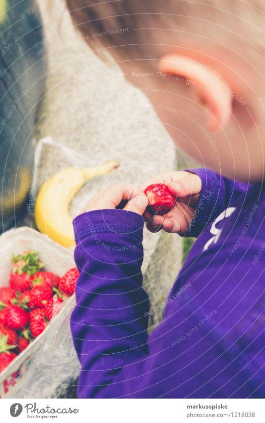 kleinkind isst erdbeeren Lebensmittel Frucht Erdbeeren Banane Essen Bioprodukte Vegetarische Ernährung Slowfood Fingerfood Gesunde Ernährung Wohlgefühl