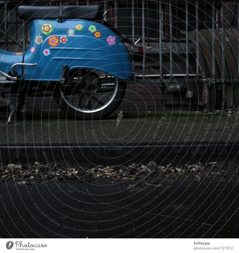 -bote Umhang Tunnel Einfahrt Haus dunkel Abdeckung Rostschutzfarbe Blume Etikett ökologisch grün Umwelt Kraft Romantik Schwalben Backstein Ständer Garage