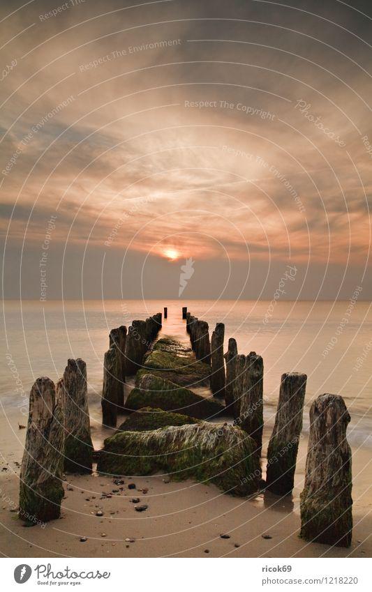 Buhne am Weststrand Natur Ferien & Urlaub & Reisen Wasser Meer Landschaft Wolken Strand Küste Idylle Schönes Wetter Romantik Ostsee Abenddämmerung