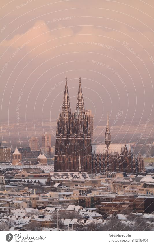 Kölner Domspitzen schneebedeckt Stadt Stadtzentrum Skyline Kirche Sehenswürdigkeit Wahrzeichen Denkmal Bekanntheit dunkel historisch einzigartig