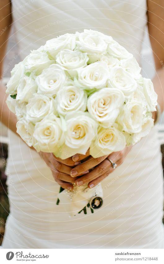 Bouquet. Lifestyle elegant Stil schön Maniküre Feste & Feiern Hochzeit feminin Frau Erwachsene Hand Finger 1 Mensch 18-30 Jahre Jugendliche Umwelt Natur Pflanze