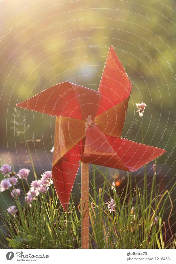 Windrad im Abendlicht l Glück Leben harmonisch Meditation Freizeit & Hobby Spielen Wohnung Garten Bewegung drehen Erholung Hoffnung Inspiration Kraft