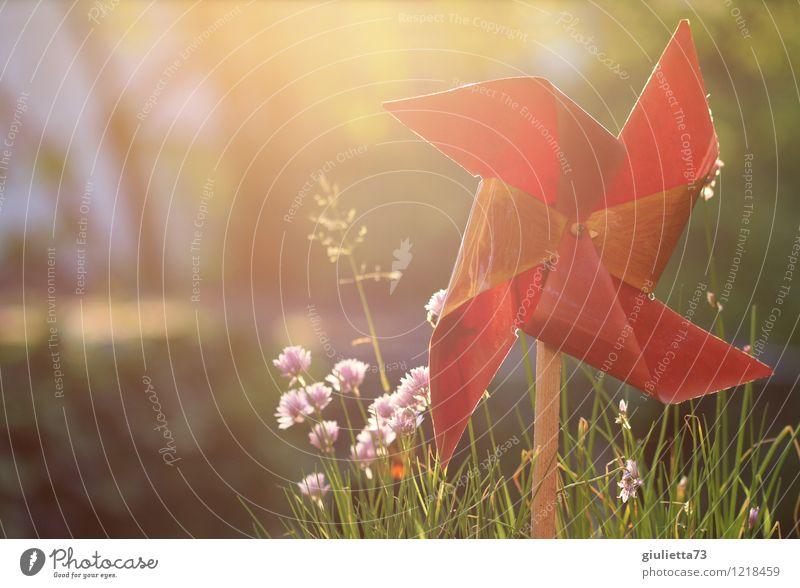 Windrad im Abendlicht ll Lifestyle Leben harmonisch Wohlgefühl Meditation Freizeit & Hobby Spielen Wohnung Garten Bewegung drehen Glück Hoffnung einzigartig