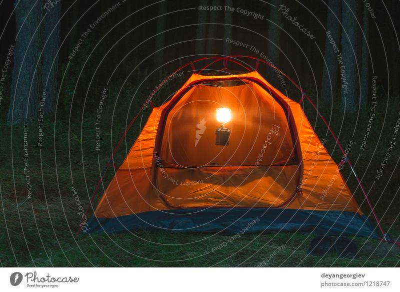 Orange Zelt im Wald nachts Natur Ferien & Urlaub & Reisen Sommer Baum Landschaft dunkel schwarz Berge u. Gebirge gelb Lampe Freizeit & Hobby Wetter wild