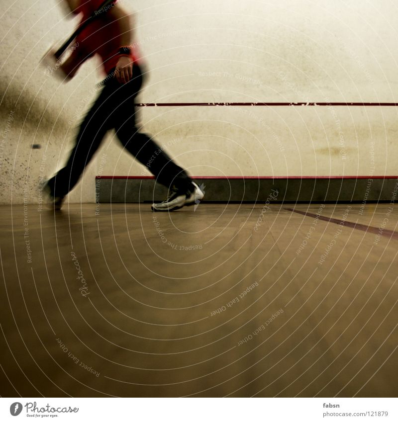 """MAX """"HAMMERHAND"""" PEACOCK Squash transpirieren kämpfen Sportveranstaltung Spielen Unschärfe Bewegungsunschärfe schlagen Geschwindigkeit Erfolg verlieren"""