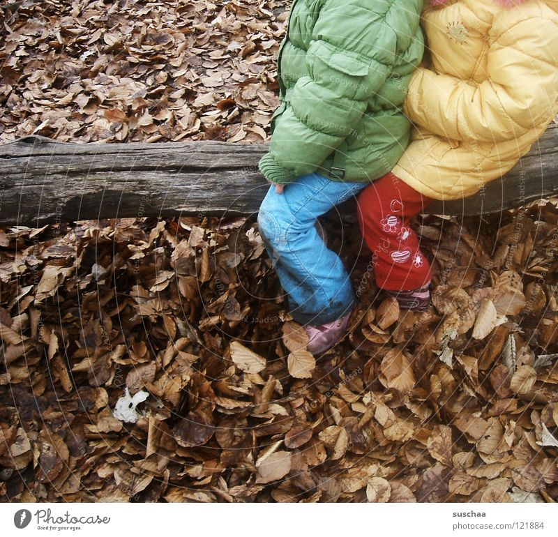 gestern auf dem spielplatz .. Kind Spielen toben Spielplatz kalt Blatt Januar Februar Baumstamm Holz mehrfarbig Hose Jacke Anorak Freude Bekleidung sitzen