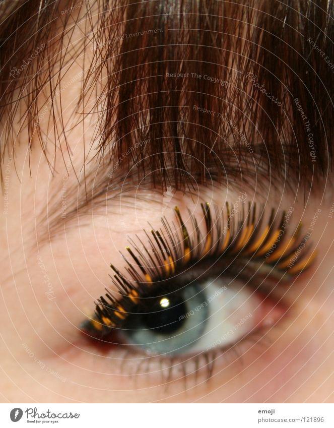 falsch schön Auge Haare & Frisuren Haut gold niedlich nah lang Karneval Club Kosmetik Pony Wimpern Augenbraue gestellt