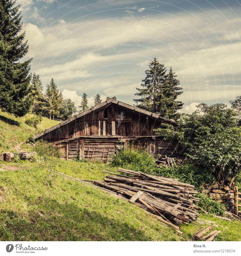 Idylle Natur Landschaft Wolken Sommer Wald Hügel Alpen Berge u. Gebirge Südtirol Hütte Gebäude authentisch natürlich Meran Holzhaus Berghang rustikal Farbfoto