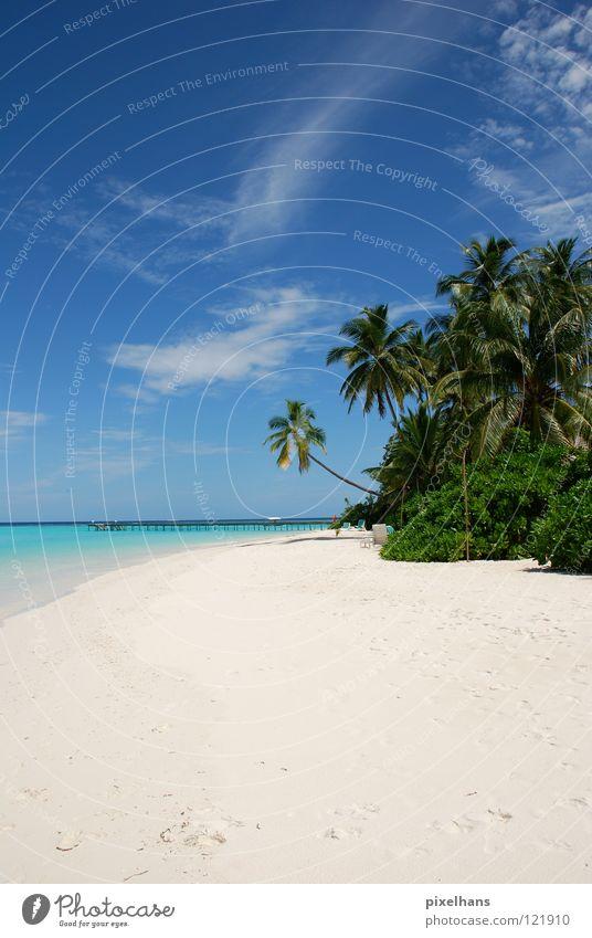 Mach doch mal blau!!! ruhig Ferien & Urlaub & Reisen Ferne Sommer Strand Meer Insel Sand Wasser Wolken Horizont Wärme Sträucher Küste Fußspur heiß grau grün