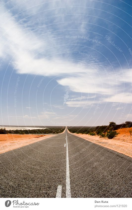Weiter. Gerade. Aus. Tralien. Australien Outback heiß Physik rot braun grau Asphalt geradeaus transpirieren Landweg fahren Wolken Monkey Mia Sträucher