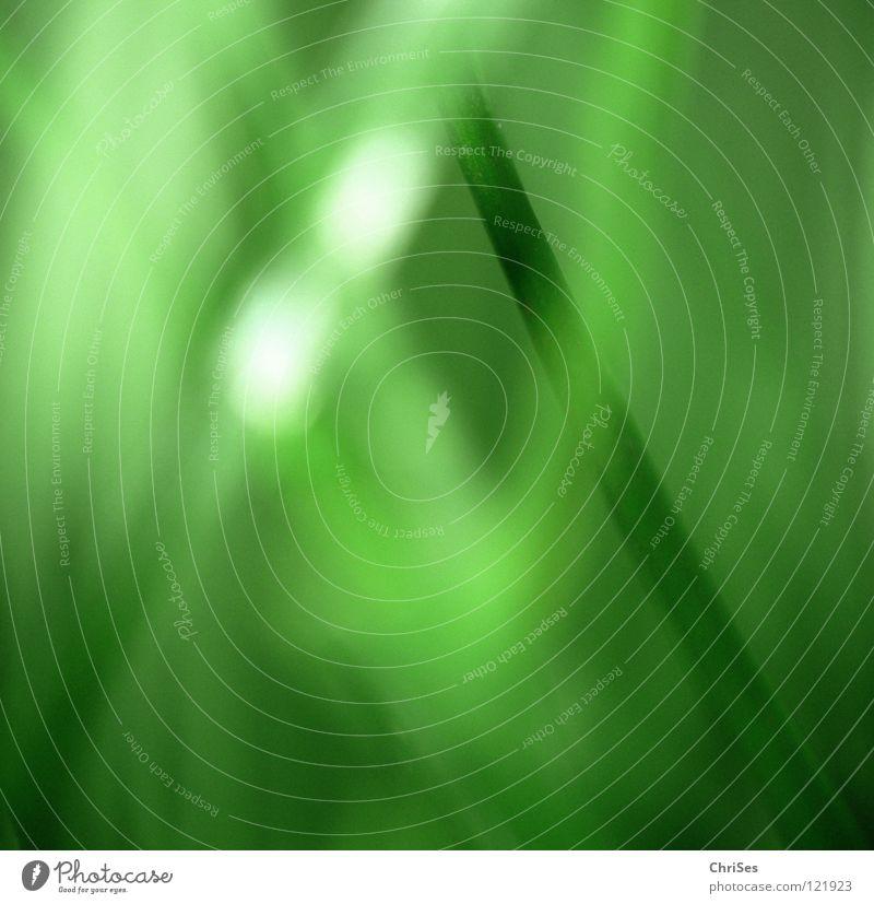 Traumland : Grasgrün_04 Natur Pflanze Einsamkeit Wiese Gefühle Frühling klein Feld Wachstum Rasen Spitze Stengel Halm reduzieren