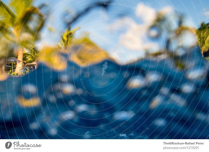 Atemlos durch den Pool Wasser Wassertropfen blau gelb grün schwarz türkis weiß Unterwasseraufnahme Unterwasserkamera Schwimmbad Wellen Strukturen & Formen Palme