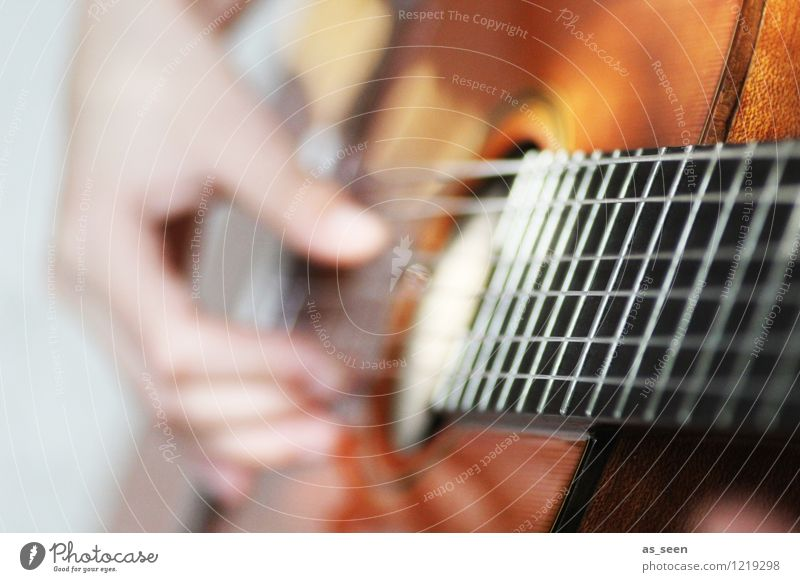 Gitarrenspiel II Hand Finger Kunst Jugendkultur Subkultur Rockabilly Show Musik Musik hören Konzert Open Air Band Musiker trendy Wärme braun grau Gefühle