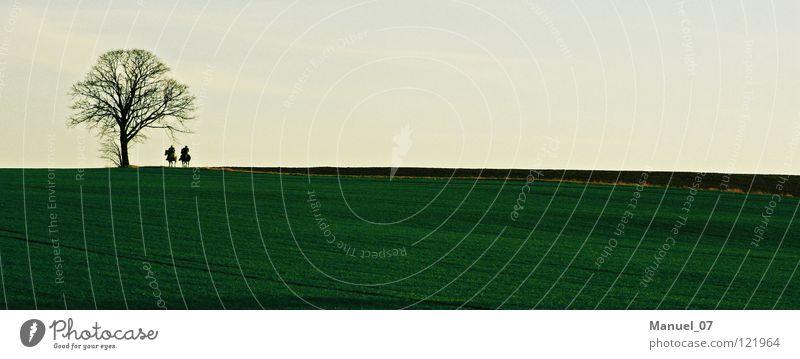 LONESOME RIDERS Farbfoto Außenaufnahme Textfreiraum oben Textfreiraum unten Hintergrund neutral Abend Dämmerung Schatten Kontrast Silhouette Sonnenlicht