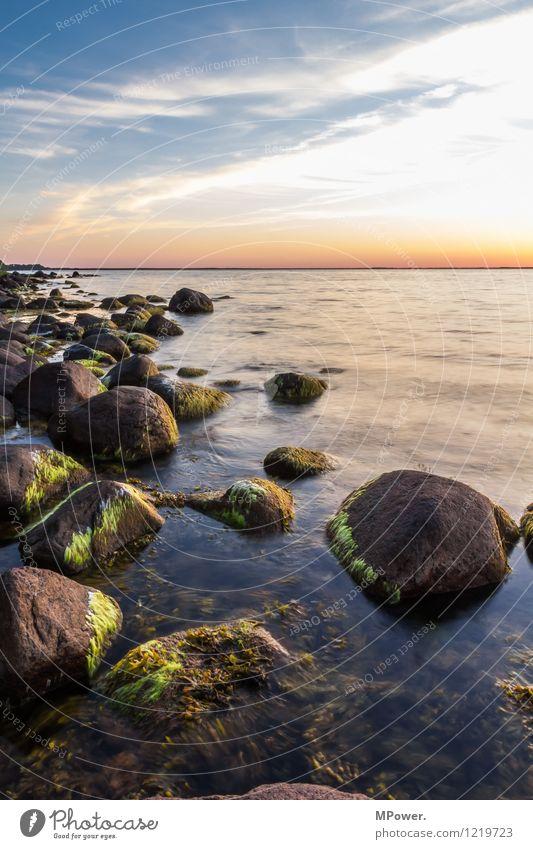 stille wasser... Umwelt Natur Himmel Wolken Sonnenaufgang Sonnenuntergang Sonnenlicht Sommer Wetter Schönes Wetter Wellen Küste Seeufer Strand Ostsee Meer Moor