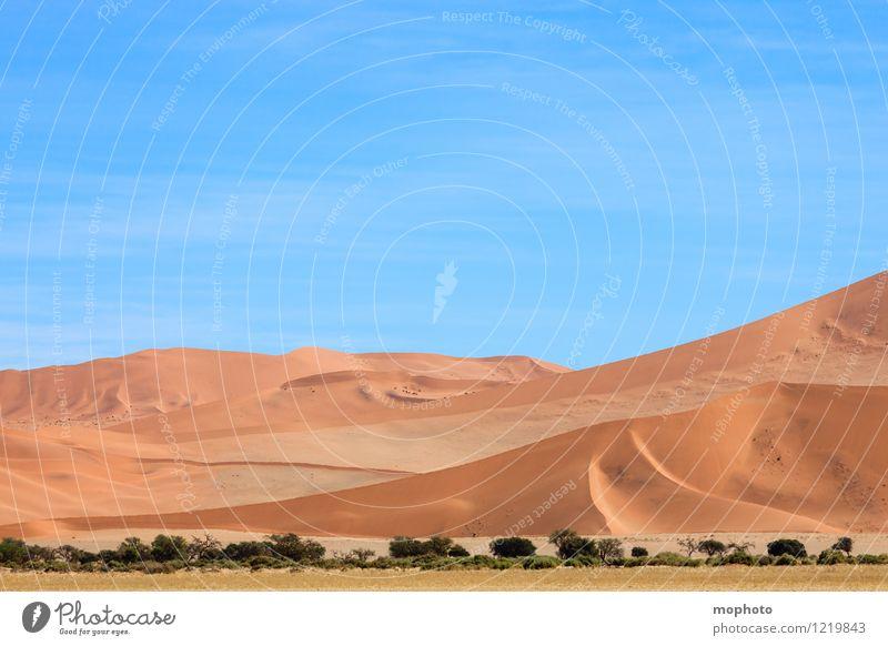 Schöne Kurven #1 Ferien & Urlaub & Reisen Tourismus Ferne Safari Natur Landschaft Sand Himmel Wärme Wüste Namib blau gelb orange Abenteuer Klima Umwelt Düne