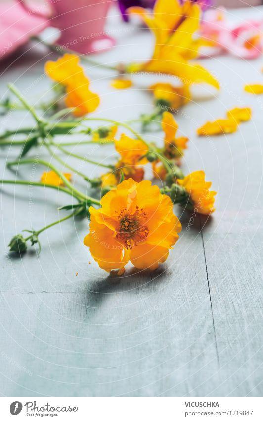 Gelbe Blumen auf dem Tisch Natur Pflanze Sommer Blatt gelb Leben Frühling Blüte Herbst Stil Hintergrundbild Holz Garten Design Dekoration & Verzierung