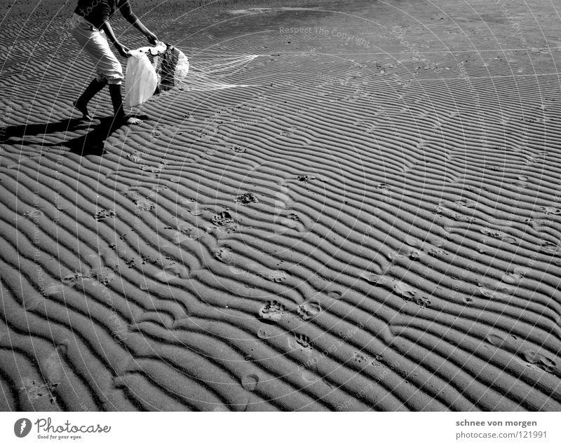 linien abdrücke fliegen Meer See Sommer schwarz weiß Ebbe Geschwindigkeit Erde Sand Wasser mare sea Fliege Drache Wind fly Kontrast Furche Linie Zeichen Flut