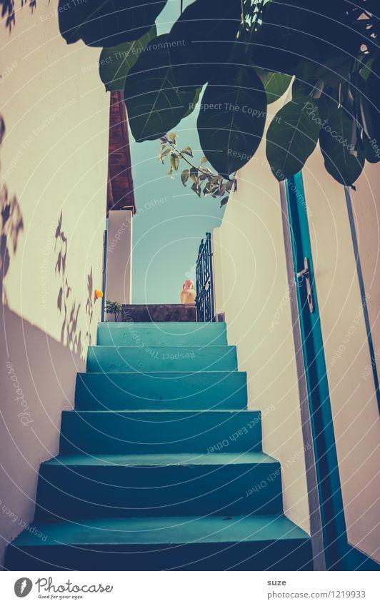 Das Blau tönt Stil Ferien & Urlaub & Reisen Kultur Pflanze Blatt Bauwerk Architektur Treppe Tür alt authentisch hoch trocken blau anstrengen Idylle