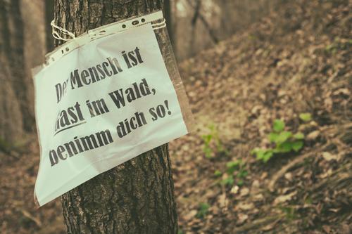 Eintritt frei! Wald Umwelt Denken braun nachdenklich Schilder & Markierungen Hinweisschild Schutz Umweltschutz nachhaltig Warnhinweis Zettel Forstwirtschaft