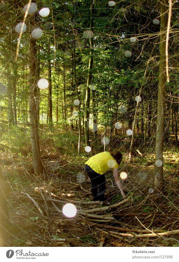 ewige suche nach dem ewigen etwas! grün Einsamkeit Wald Herbst Suche Ast Punkt Freundlichkeit Schönes Wetter Geister u. Gespenster Erscheinung durcheinander